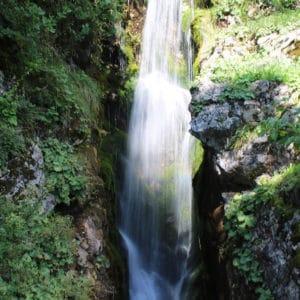 Cascade jardin la Jaÿsinia