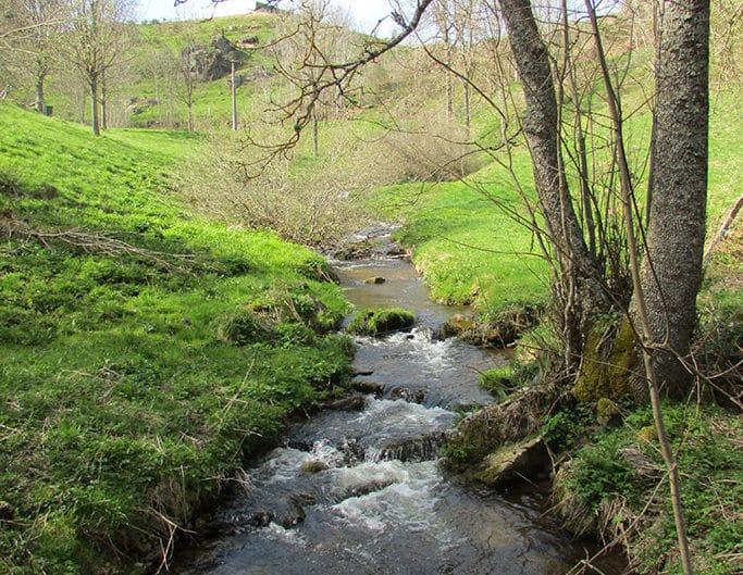Ruisseau Effangeas
