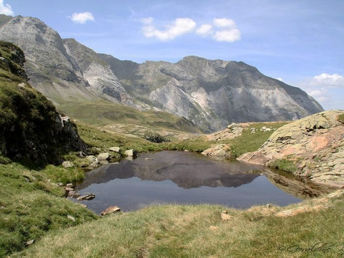 Reflet sur un mini lac