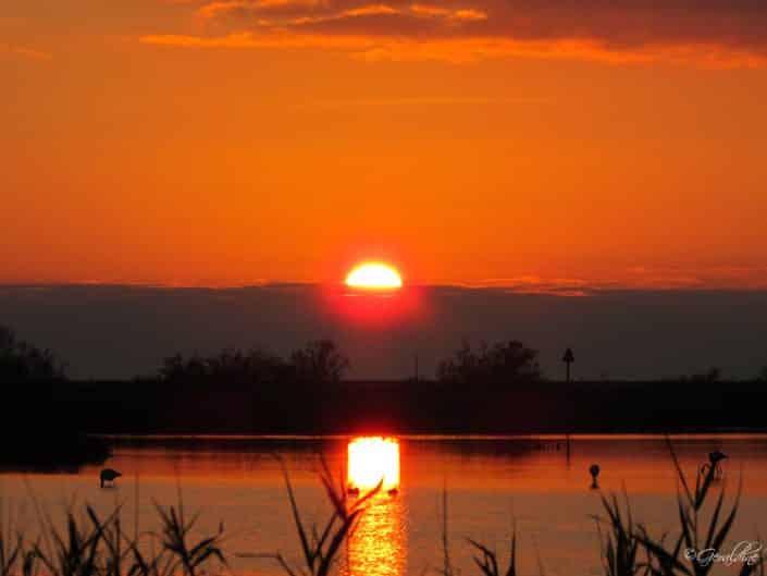 Coucher de soleil à la presqu'île de Giens