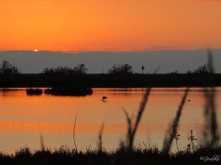 soleil couchant presque disparu à la presqu'île de Giens