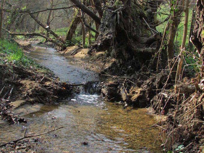 Ruisseau de carré