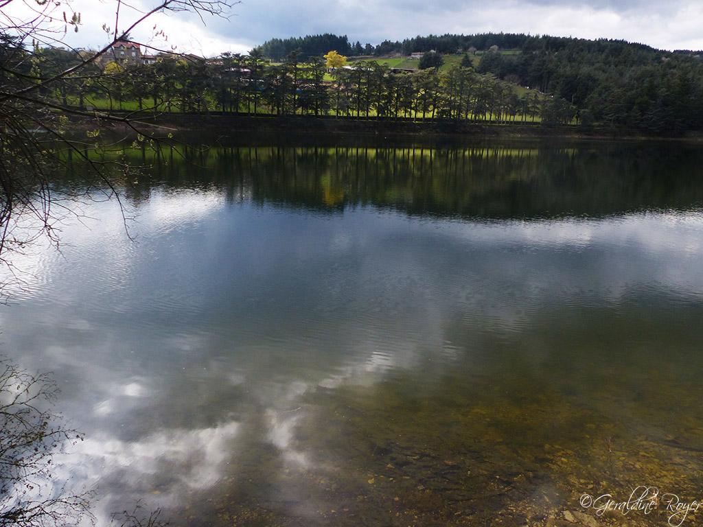 Rive du barrage du Ternay