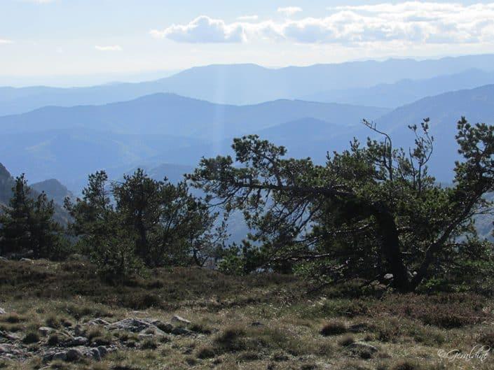 Vue autour du Mont Mézenc