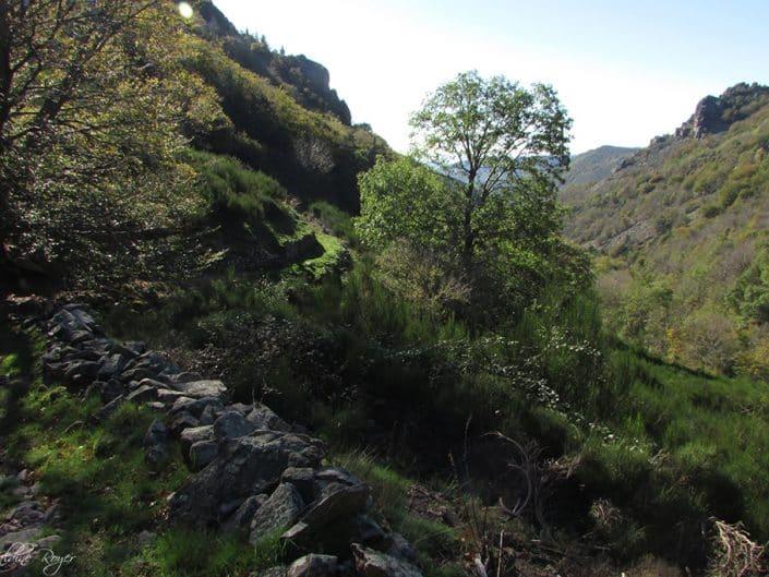 Vue dans Le Masoyer Ardèche Sud