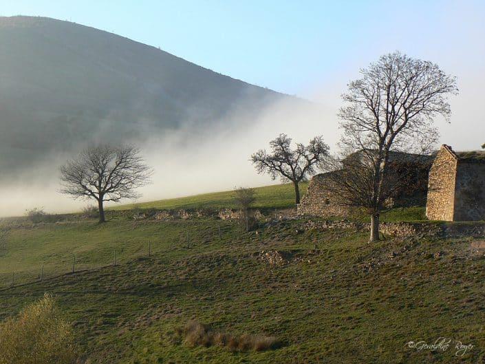 Maison dans la brume