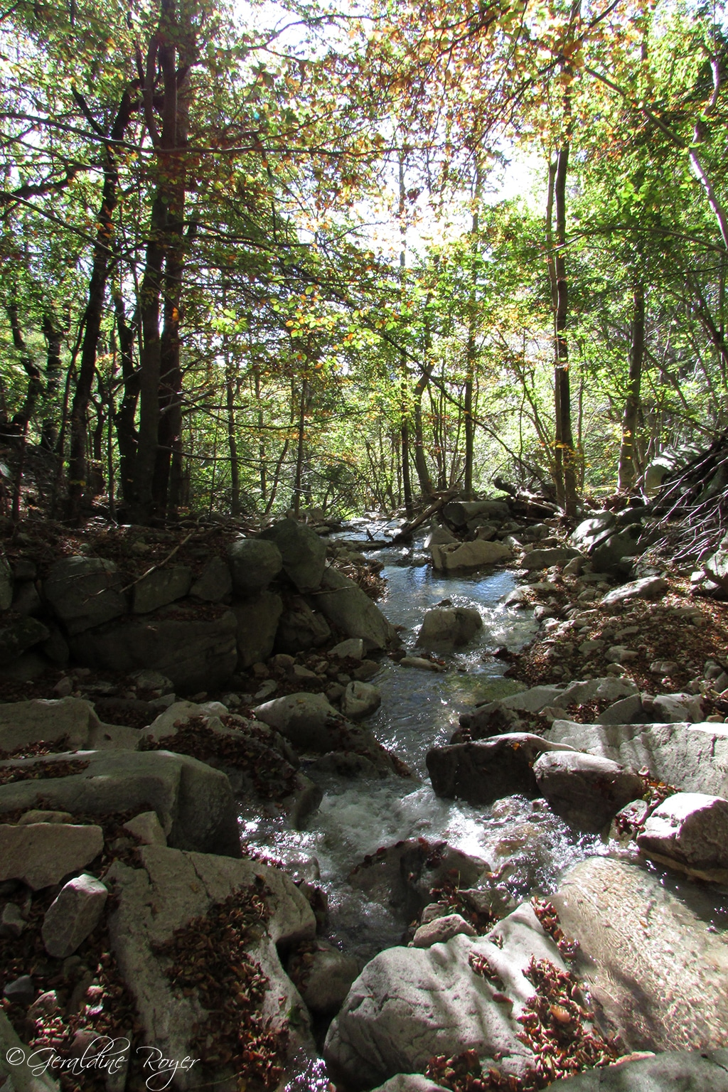 Rivière dans le Masoyer