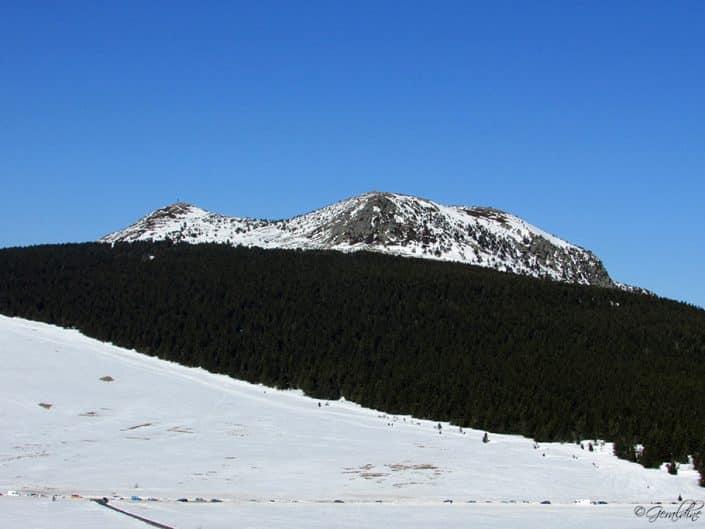 Versant du Mézenc sous la neige