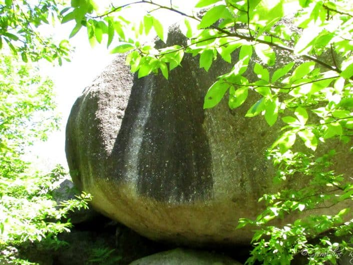 Une boule de Gargantua croisée à sablières