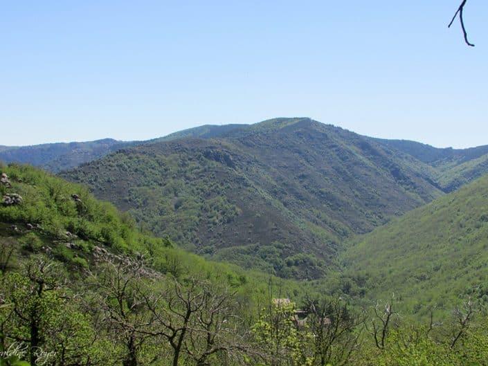 Vallée de la drobie à sablières